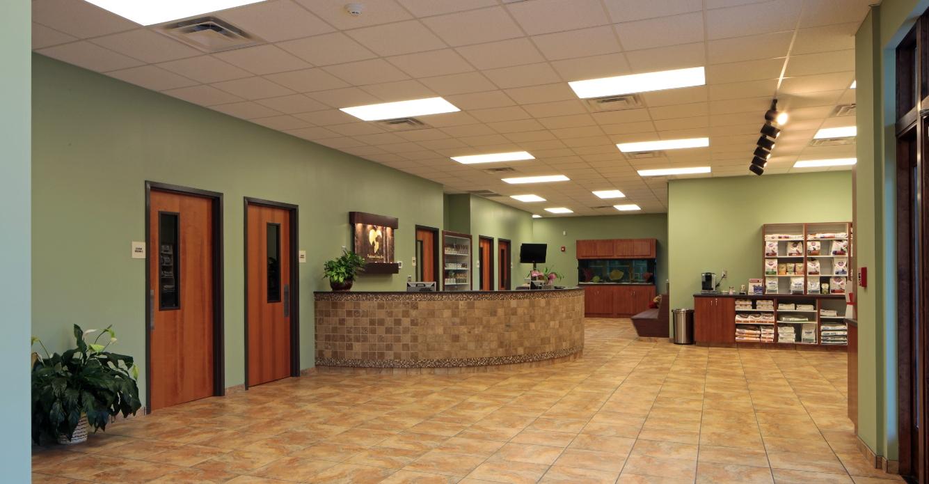 Veterinary Healthcare Int 1 | SD Clifton Construction