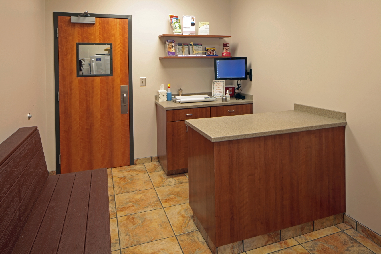 Veterinary Healthcare Int 3 | SD Clifton Construction
