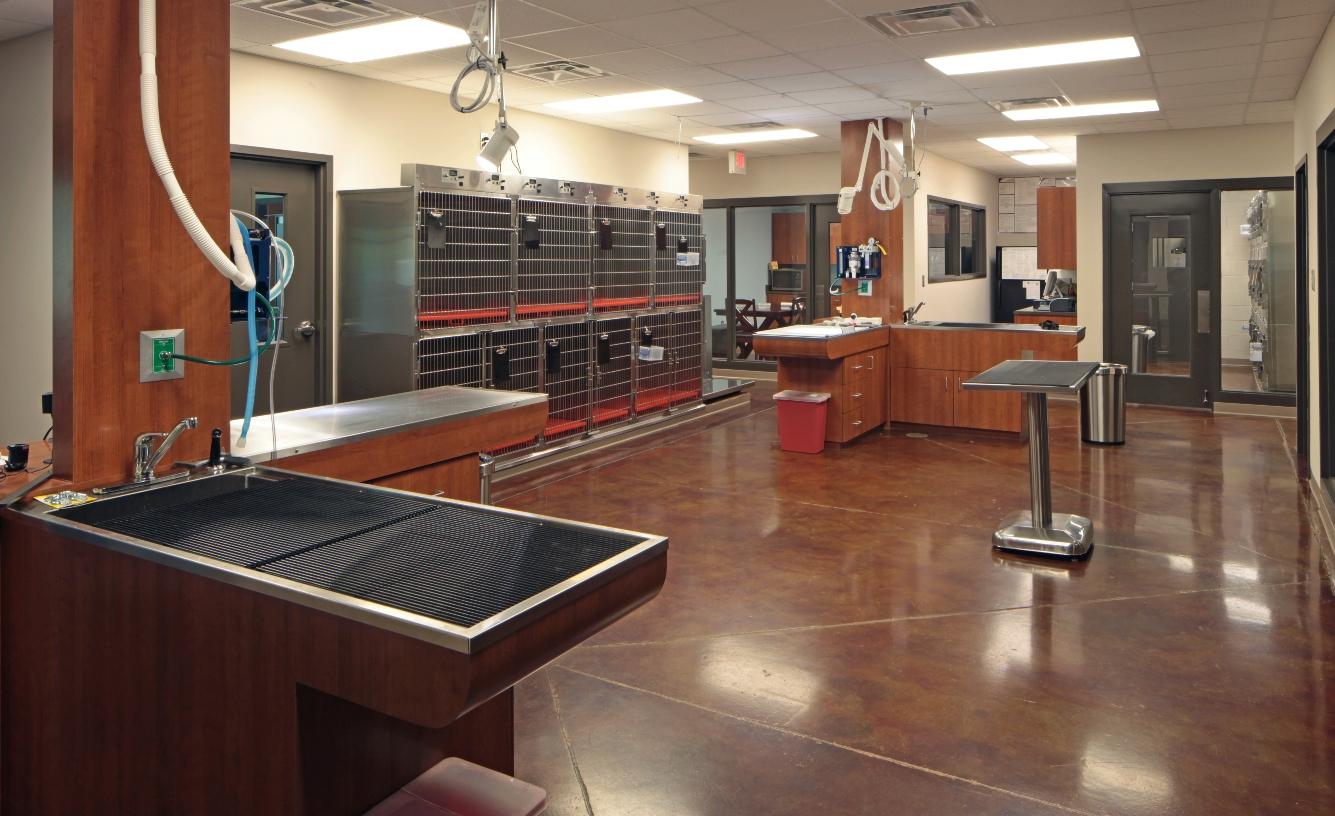 Veterinary Healthcare Int 5 | SD Clifton Construction