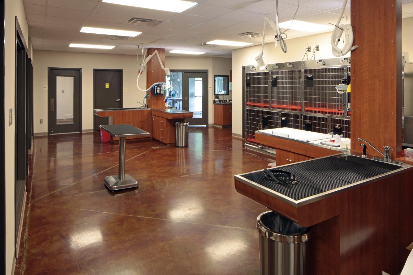 Veterinary Healthcare Int 9 | SD Clifton Construction